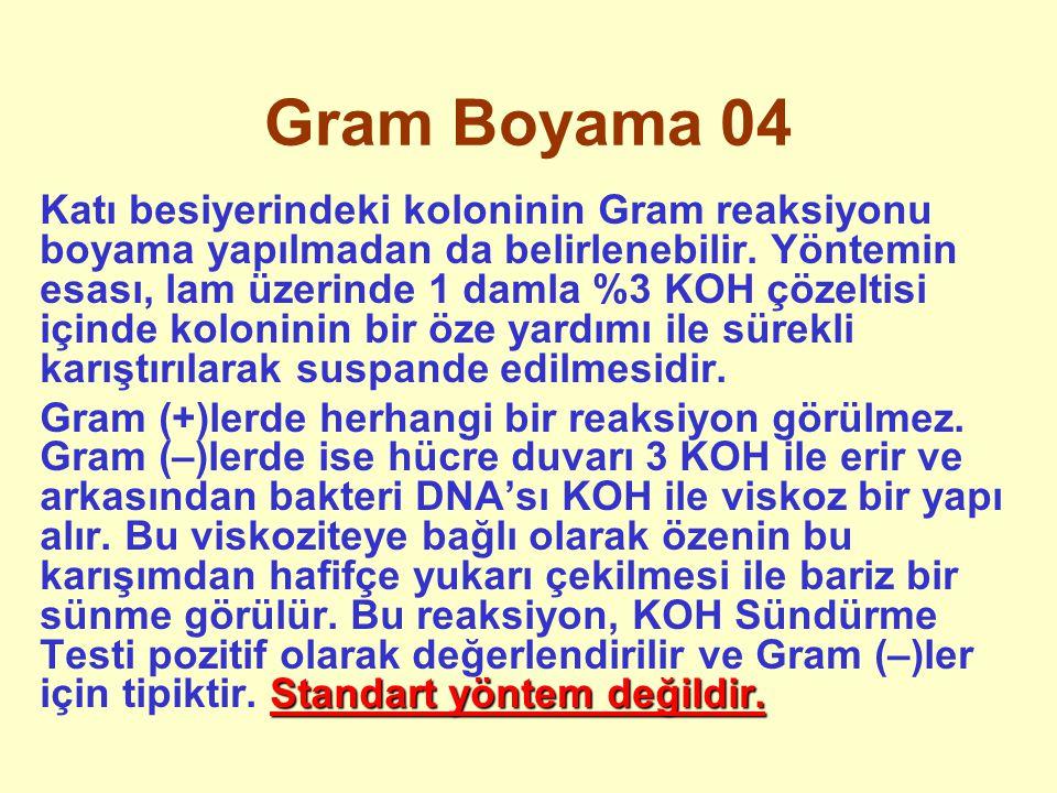 Gram Boyama 04