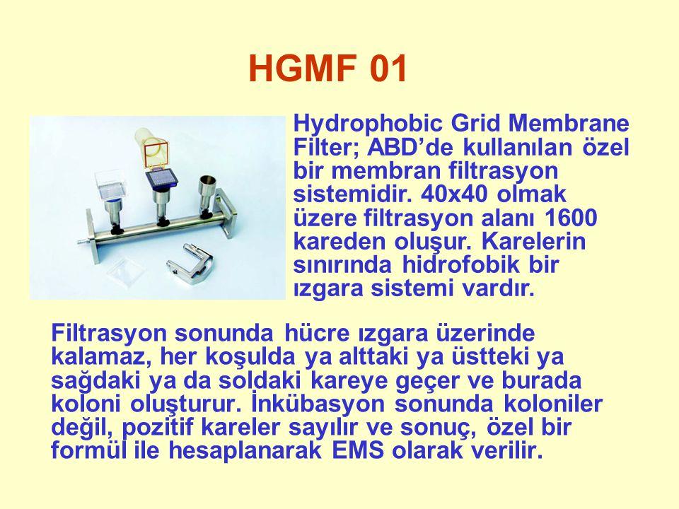 HGMF 01