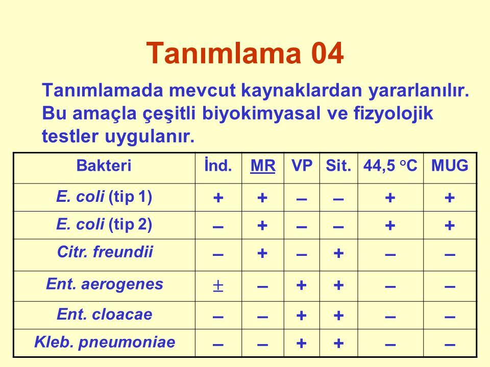 Tanımlama 04 Tanımlamada mevcut kaynaklardan yararlanılır. Bu amaçla çeşitli biyokimyasal ve fizyolojik testler uygulanır.