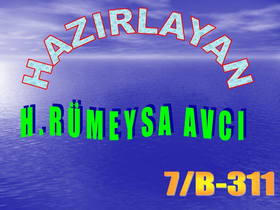 HAZIRLAYAN H.RÜMEYSA AVCI 7/B-311