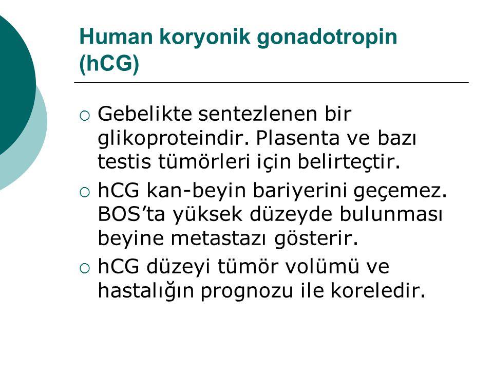 Human koryonik gonadotropin (hCG)