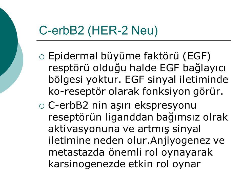 C-erbB2 (HER-2 Neu)