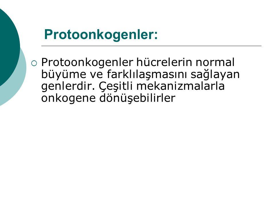 Protoonkogenler: Protoonkogenler hücrelerin normal büyüme ve farklılaşmasını sağlayan genlerdir.