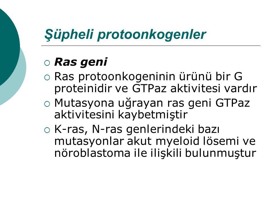 Şüpheli protoonkogenler