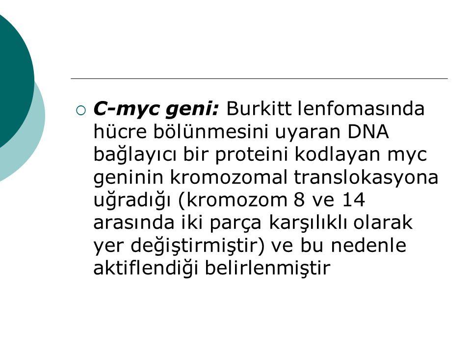 C-myc geni: Burkitt lenfomasında hücre bölünmesini uyaran DNA bağlayıcı bir proteini kodlayan myc geninin kromozomal translokasyona uğradığı (kromozom 8 ve 14 arasında iki parça karşılıklı olarak yer değiştirmiştir) ve bu nedenle aktiflendiği belirlenmiştir