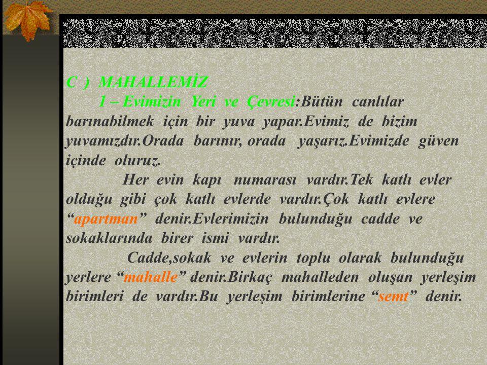 C ) MAHALLEMİZ