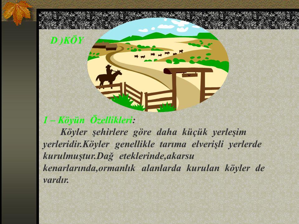 D )KÖY 1 – Köyün Özellikleri: