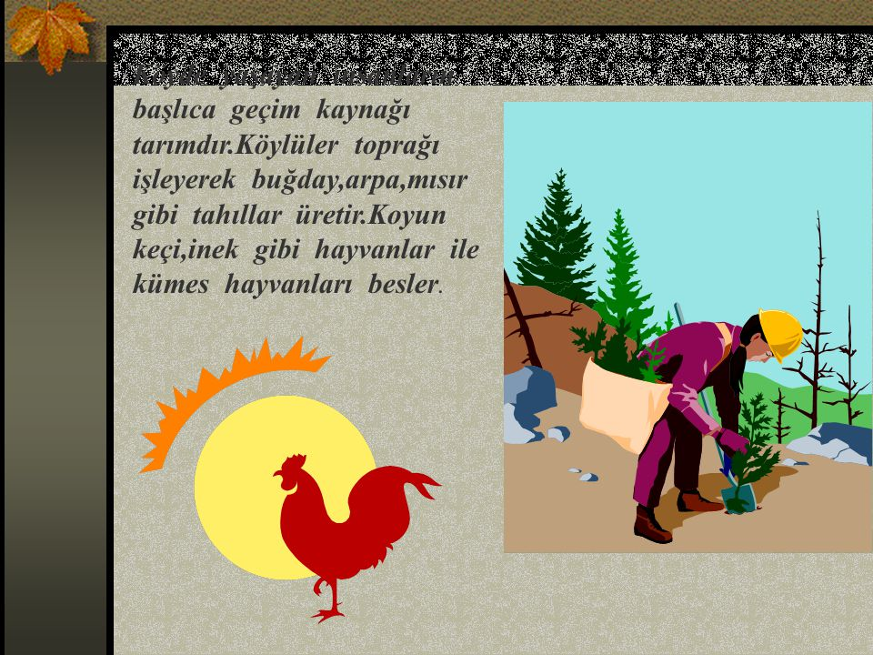 Köyde yaşayan insanların başlıca geçim kaynağı tarımdır