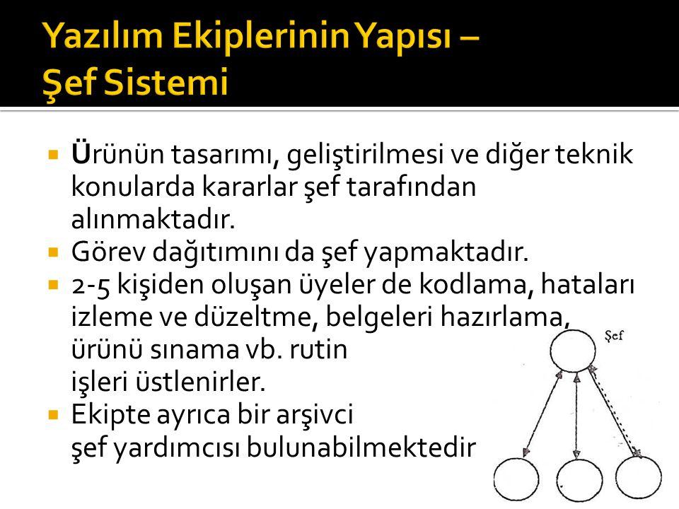 Yazılım Ekiplerinin Yapısı – Şef Sistemi