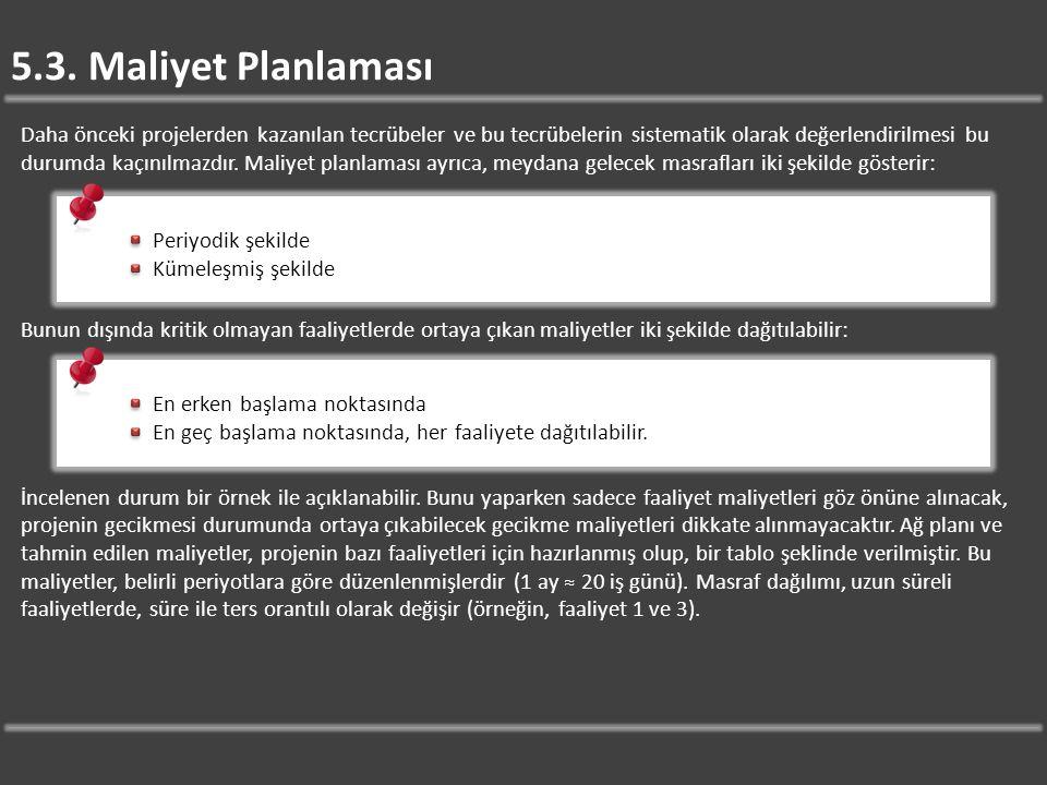 5.3. Maliyet Planlaması