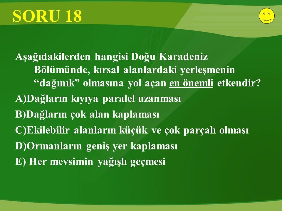 SORU 18 Aşağıdakilerden hangisi Doğu Karadeniz Bölümünde, kırsal alanlardaki yerleşmenin dağınık olmasına yol açan en önemli etkendir