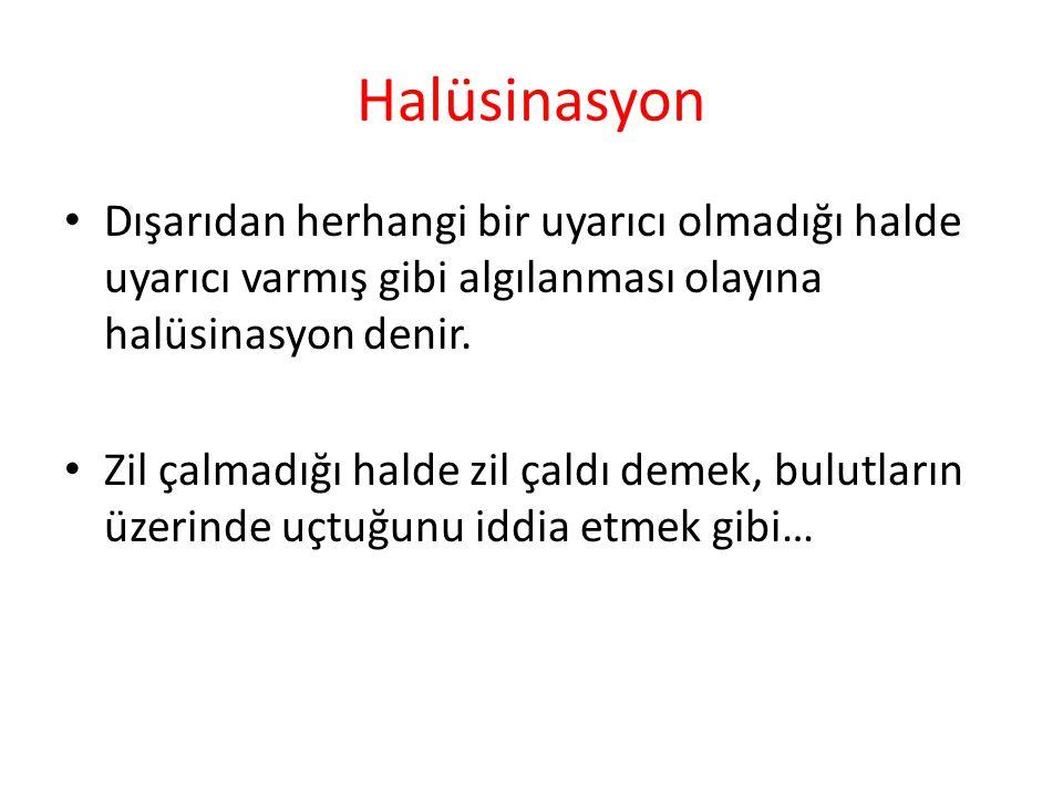 Halüsinasyon Dışarıdan herhangi bir uyarıcı olmadığı halde uyarıcı varmış gibi algılanması olayına halüsinasyon denir.