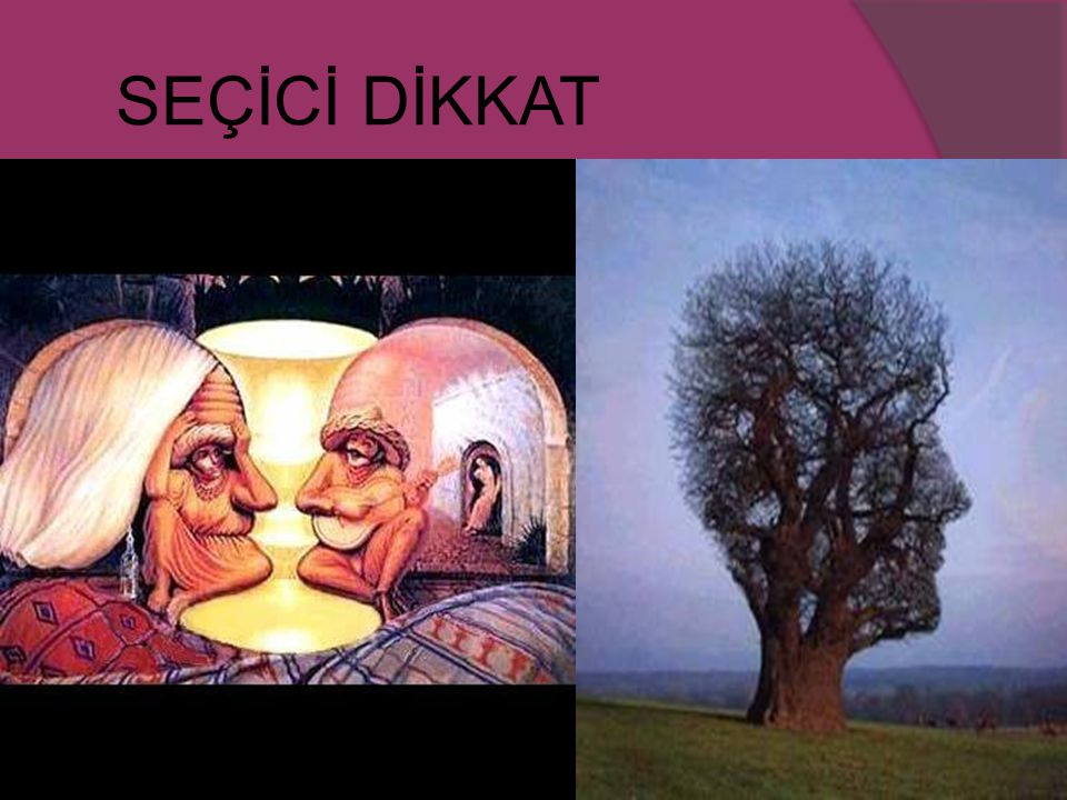 SEÇİCİ DİKKAT