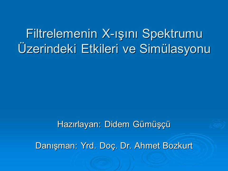 Filtrelemenin X-ışını Spektrumu Üzerindeki Etkileri ve Simülasyonu
