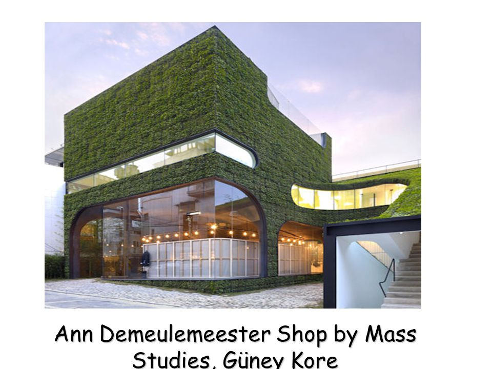 Ann Demeulemeester Shop by Mass Studies, Güney Kore