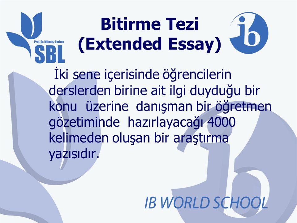 Bitirme Tezi (Extended Essay)