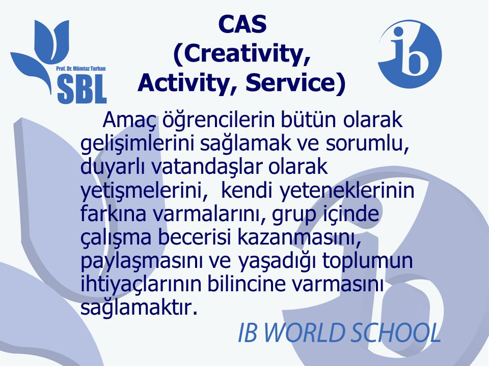 CAS (Creativity, Activity, Service)