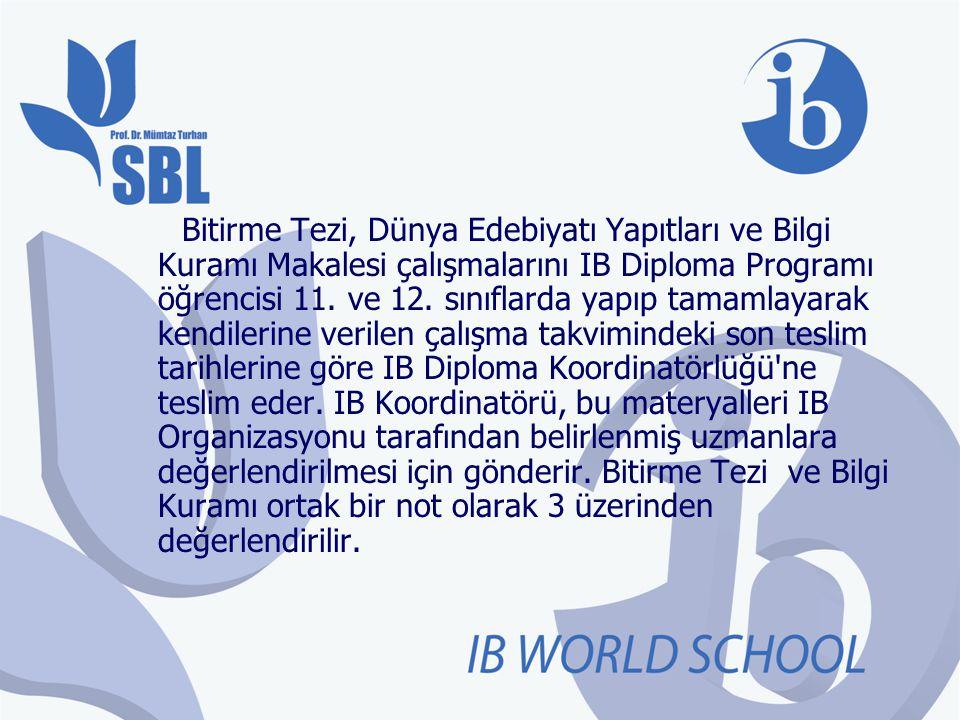 Bitirme Tezi, Dünya Edebiyatı Yapıtları ve Bilgi Kuramı Makalesi çalışmalarını IB Diploma Programı öğrencisi 11.