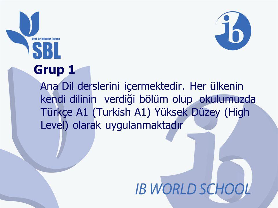 Grup 1