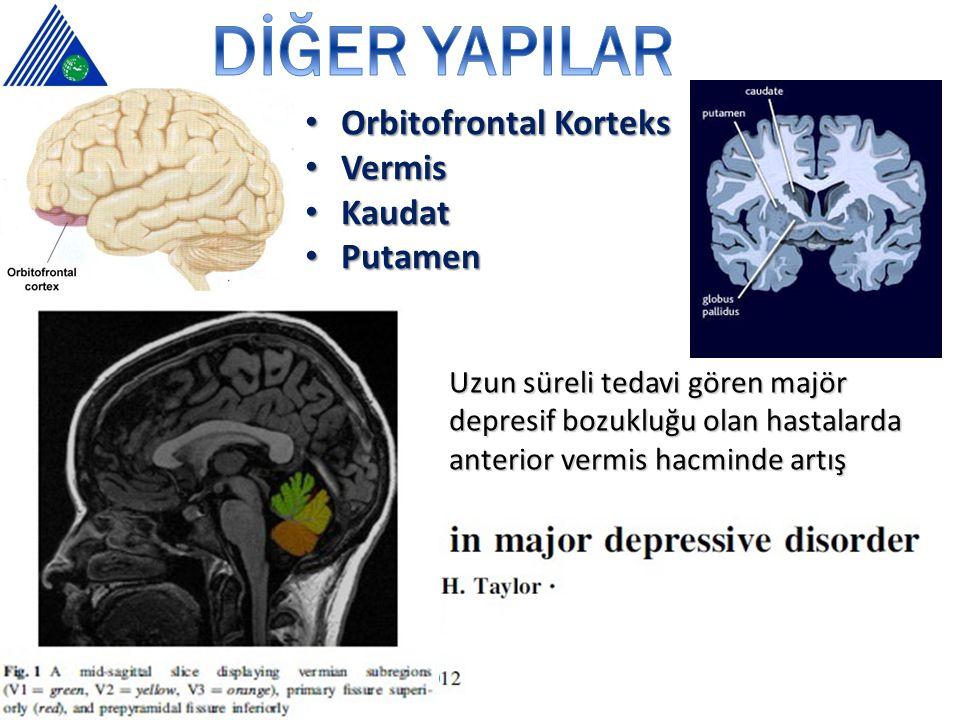 DİĞER YAPILAR Orbitofrontal Korteks Vermis Kaudat Putamen