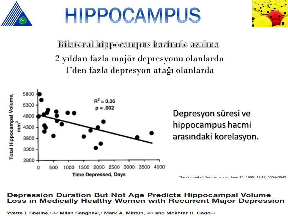 Bilateral hippocampus hacimde azalma