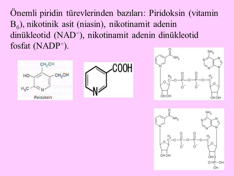 Önemli piridin türevlerinden bazıları: Piridoksin (vitamin B6), nikotinik asit (niasin), nikotinamit adenin dinükleotid (NAD+), nikotinamit adenin dinükleotid fosfat (NADP+).