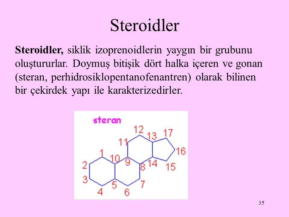 Steroidler