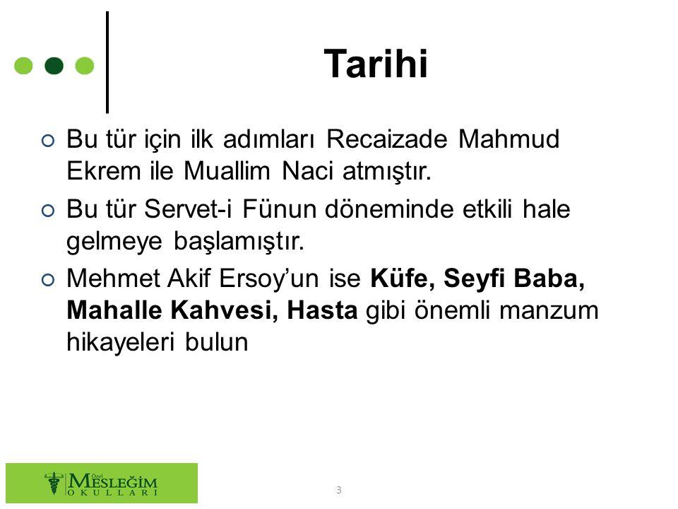 Tarihi Bu tür için ilk adımları Recaizade Mahmud Ekrem ile Muallim Naci atmıştır. Bu tür Servet-i Fünun döneminde etkili hale gelmeye başlamıştır.