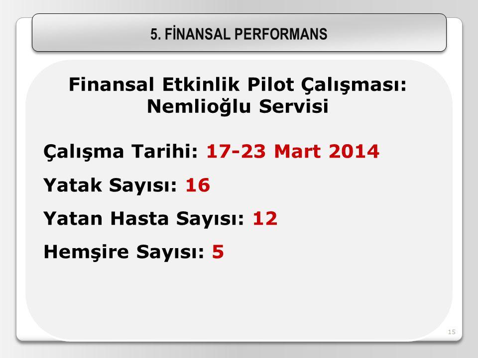 Finansal Etkinlik Pilot Çalışması: