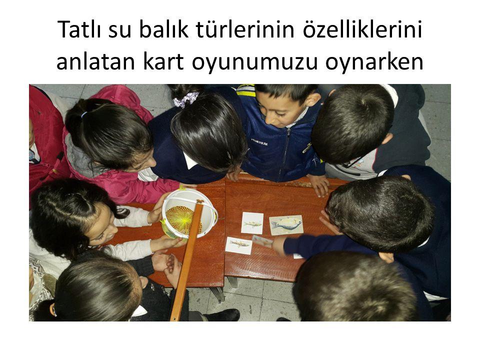Tatlı su balık türlerinin özelliklerini anlatan kart oyunumuzu oynarken