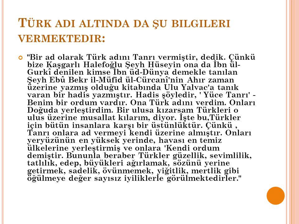 Türk adi altinda da şu bilgileri vermektedir: