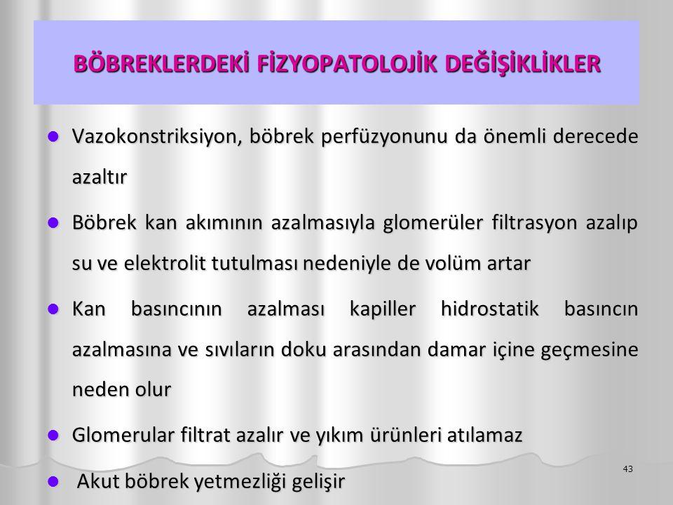 BÖBREKLERDEKİ FİZYOPATOLOJİK DEĞİŞİKLİKLER