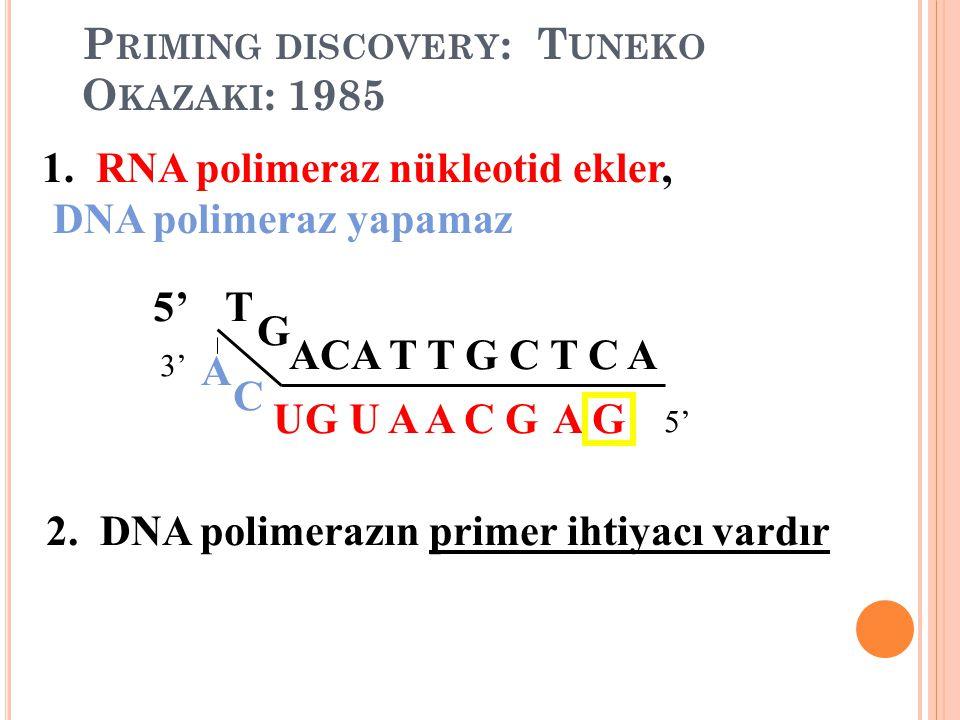Priming discovery: Tuneko Okazaki: 1985