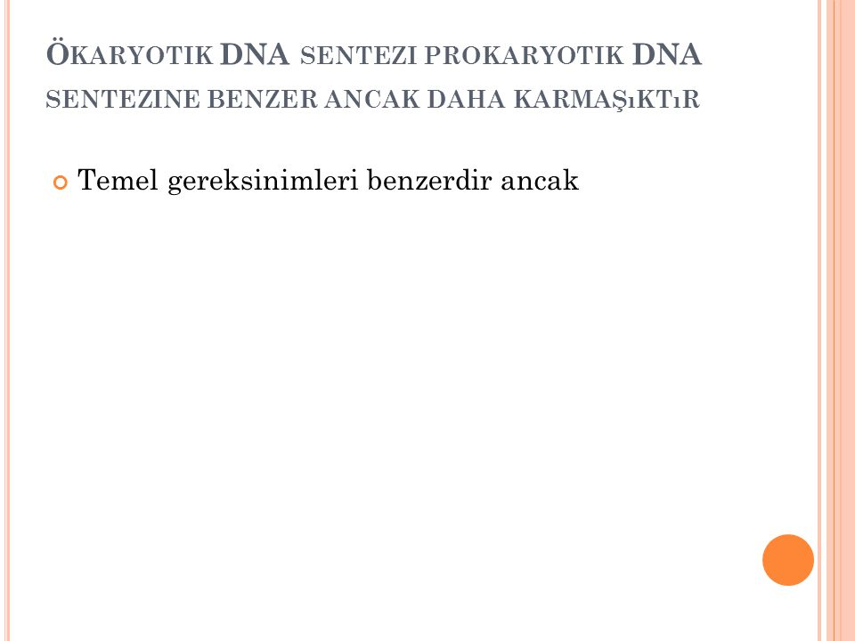 Ökaryotik DNA sentezi prokaryotik DNA sentezine benzer ancak daha karmaşıktır