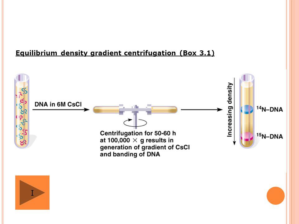 Equilibrium density gradient centrifugation (Box 3.1)