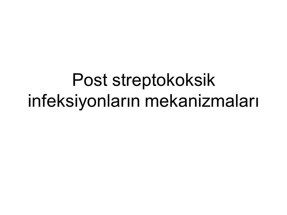 Post streptokoksik infeksiyonların mekanizmaları