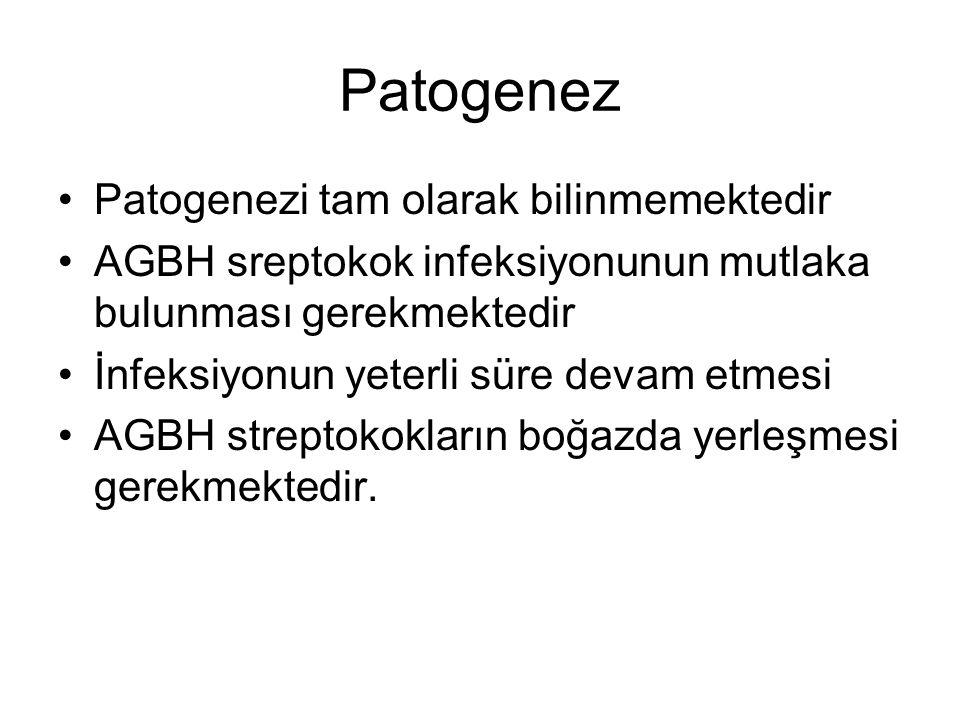 Patogenez Patogenezi tam olarak bilinmemektedir