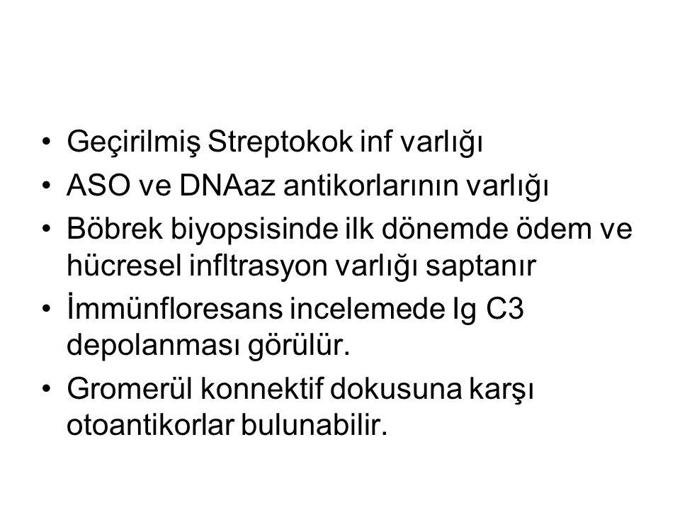 Geçirilmiş Streptokok inf varlığı