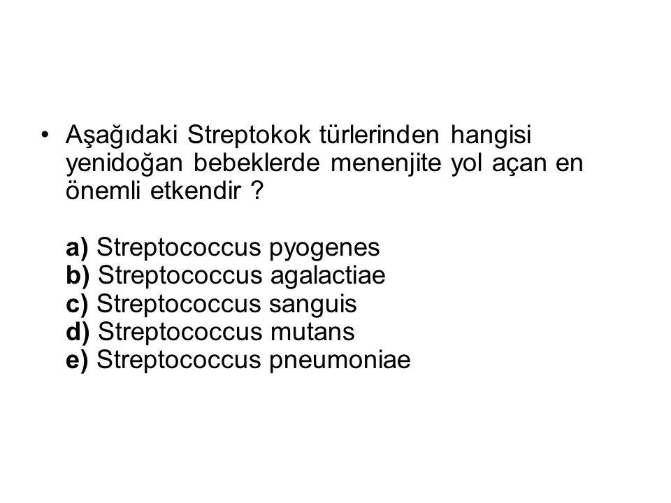 Aşağıdaki Streptokok türlerinden hangisi yenidoğan bebeklerde menenjite yol açan en önemli etkendir .
