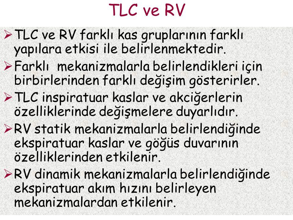 TLC ve RV TLC ve RV farklı kas gruplarının farklı yapılara etkisi ile belirlenmektedir.