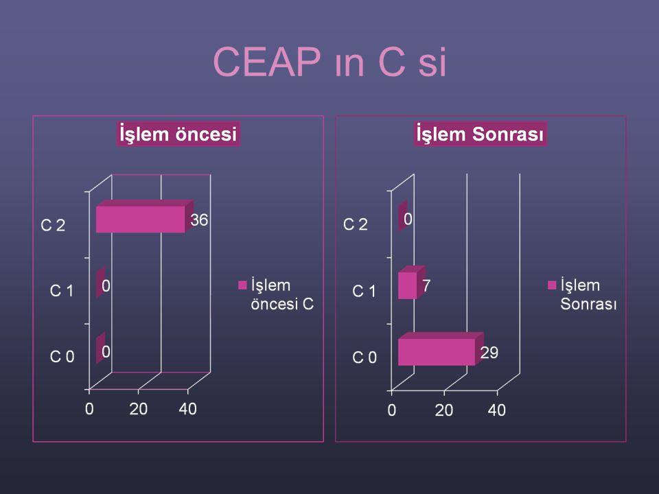 CEAP ın C si