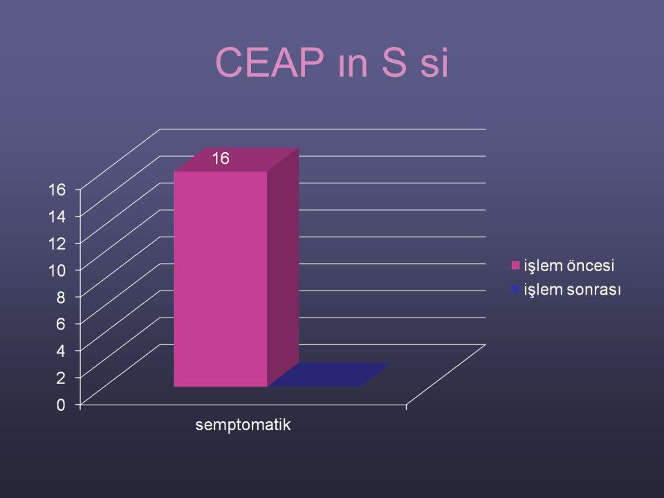 CEAP ın S si