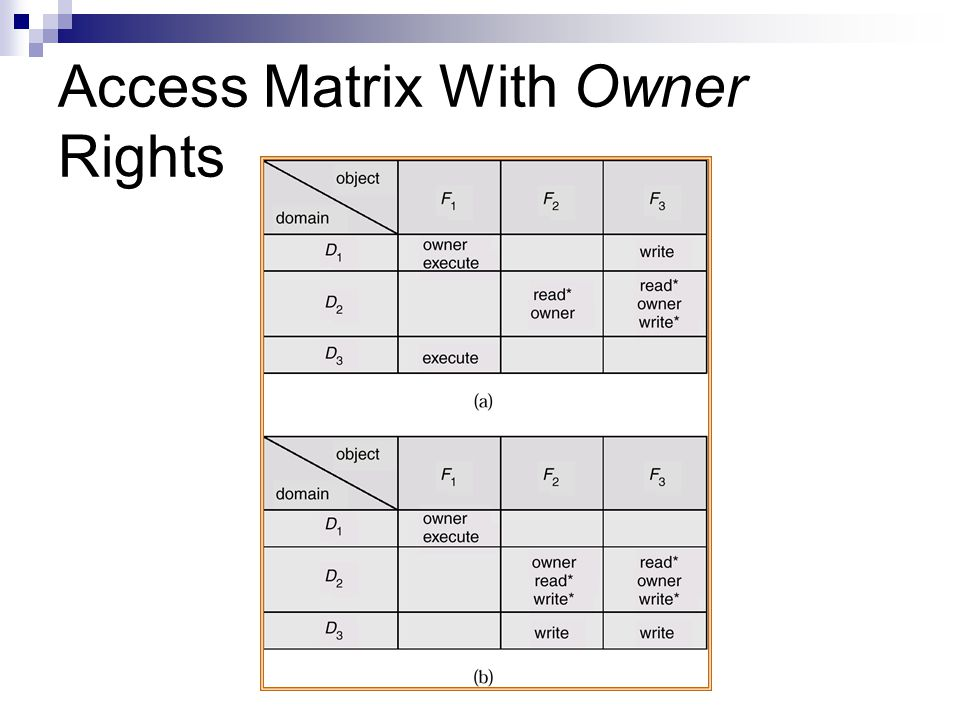 Access Matrix With Owner Rights