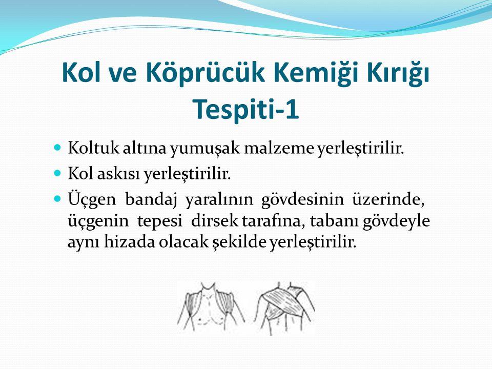 Kol ve Köprücük Kemiği Kırığı Tespiti-1