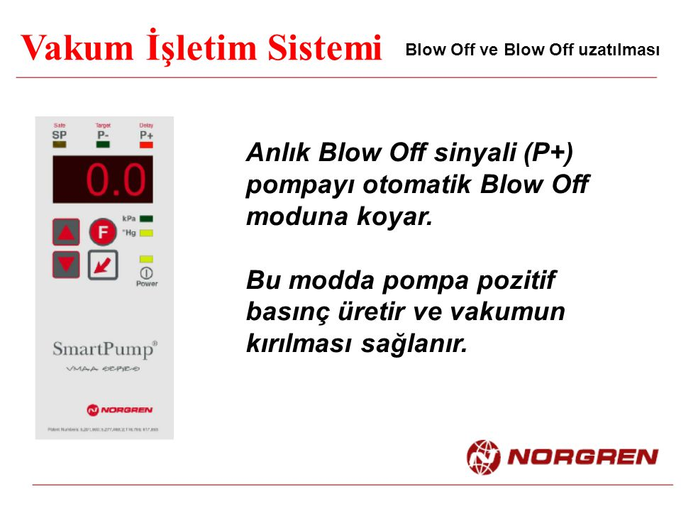 Vakum İşletim Sistemi Blow Off ve Blow Off uzatılması. Anlık Blow Off sinyali (P+) pompayı otomatik Blow Off moduna koyar.