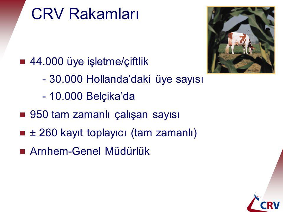 CRV Rakamları 44.000 üye işletme/çiftlik