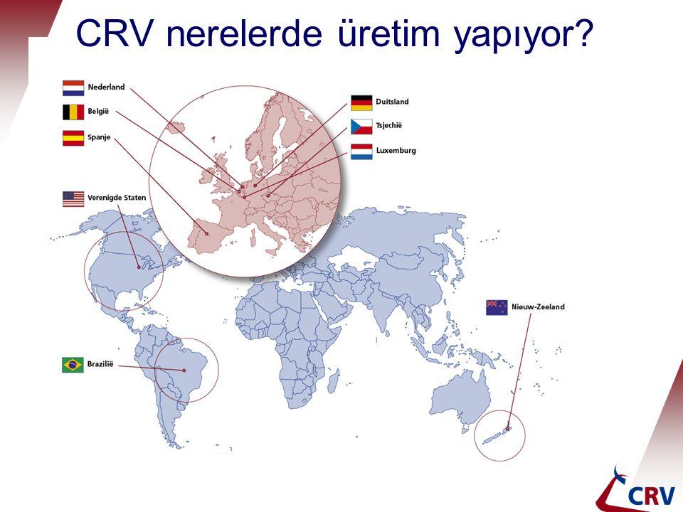 CRV nerelerde üretim yapıyor