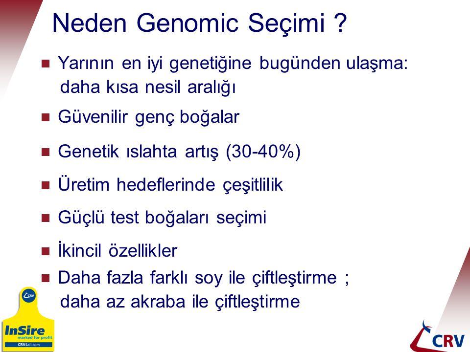 Neden Genomic Seçimi Yarının en iyi genetiğine bugünden ulaşma: