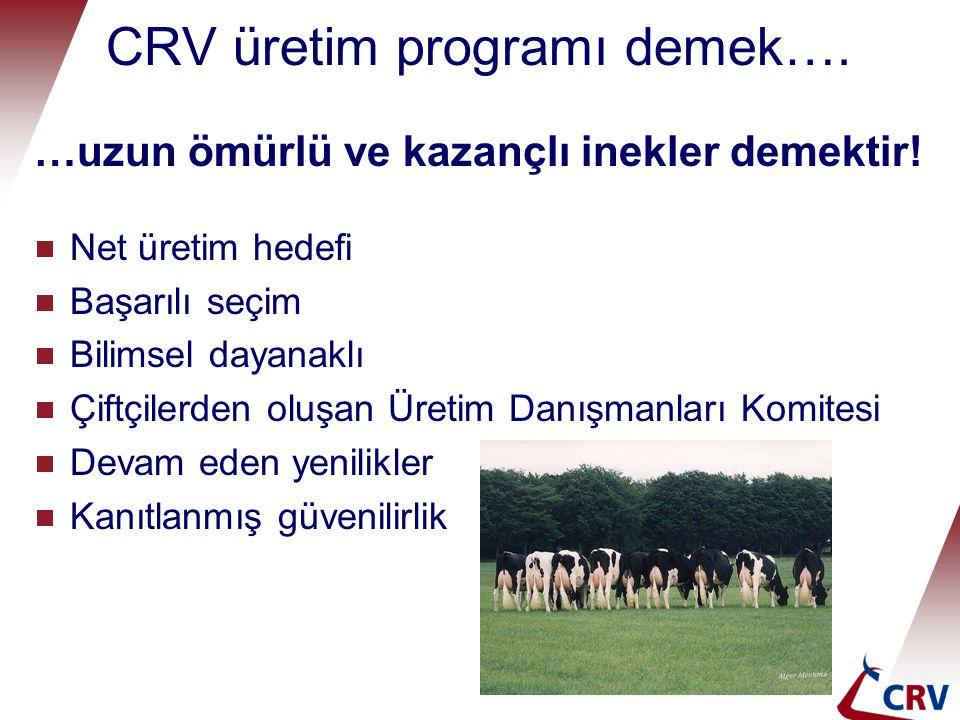 CRV üretim programı demek….