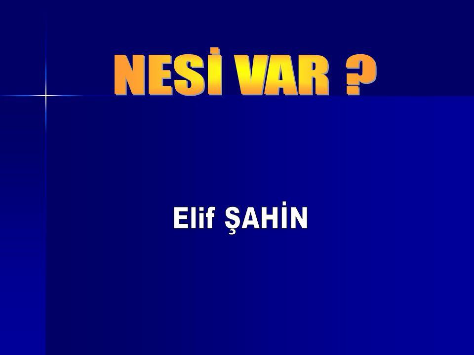 NESİ VAR Elif ŞAHİN